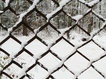 Решетка сетки Стоковые Фото