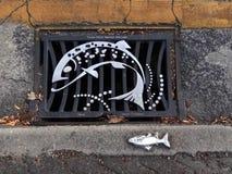 Решетка сточной трубы улицы рыб Стоковое Изображение