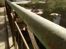 решетка утюга строба загородки большого кирпича декоративная Стоковое фото RF