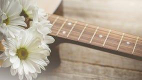 Релаксация утра и уютное с белой маргариткой на гитаре для сельского Стоковая Фотография