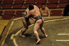 Редакционные борцы в турнире Sumo Стоковые Изображения RF