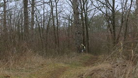 редакционо Велосипедисты горы участвуя в гонке в лесе сток-видео