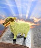 Религиозное очковтирательство стоковые изображения rf