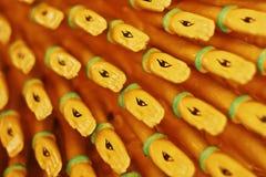 Религиозный глаз Стоковая Фотография RF