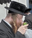 Религиозный еврей с длинными sidelocks Стоковая Фотография