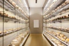 Реликвии в стеклянных шкафах стоковая фотография