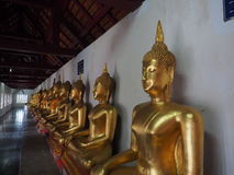 Реликвия ` s Будды стоковые фото