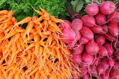 Редиска и морковь Стоковая Фотография