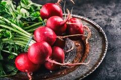 Редиска свежая редиска свежий красный цвет редиски овощ салата еды свежий японский Здоровый свежий овощ Стоковая Фотография