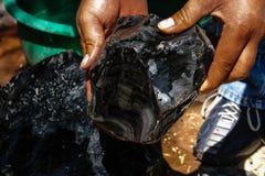 Редкий образец камня Стоковая Фотография RF