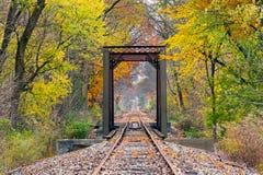 Рельсы в октябре Стоковое фото RF