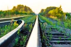 Рельсы макроса, железная дорога Стоковое фото RF