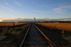 Рельсы на поле Стоковая Фотография RF
