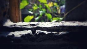 Ржавая природа Стоковая Фотография RF