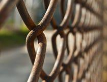 Ржавая сетка загородки Стоковая Фотография RF