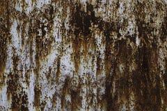 Ржавая текстура металла Стоковое Изображение RF