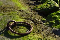 Ржавое кольцо зачаливания Стоковая Фотография RF