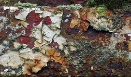 Ржавчина, лишайник и облупленная краска Стоковые Изображения