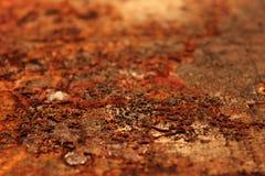 Ржавчина на древесине стоковые изображения