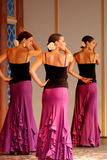 ржавчина парка flamenco europa танцы Стоковое фото RF