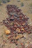 Ржавчина - сброс жестяной коробки Стоковая Фотография