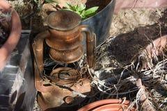 Ржавчина Vuntage и brocken лампа керосина на задворк Стоковые Изображения RF