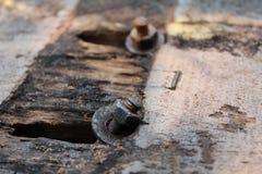 Ржавые винты стоковая фотография rf