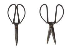 ржавые ножницы Стоковое Изображение