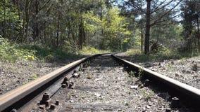 Ржавые получившиеся отказ железнодорожные пути изгибают в лесе все еще сняли с движением ветра в деревьях Перемещение, конец мира акции видеоматериалы
