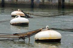 Ржавые томбуи в воде порта стоковое изображение