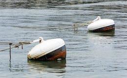 Ржавые томбуи в воде порта стоковая фотография rf