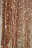 Ржавый лист цинка Стоковые Фото