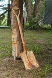 Ржавый лопаткоулавливатель Стоковое фото RF
