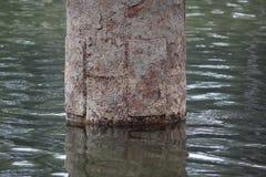 Ржавый штендер утюга в воде стоковые изображения