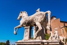 Римская статуя лошади Стоковое фото RF
