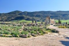 Римские руины, старый римский город Volubilis Марокко Стоковое Изображение RF