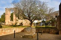 Римский саркофаг в Famagusta Стоковые Фотографии RF