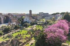 Римский форум в Риме, Италии стоковая фотография rf