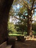 Рим, парк Стоковое фото RF