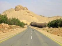 ринв дороги пустыни стоковые изображения