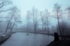 Ринв пути странный лес с туманом в зиме стоковые фотографии rf