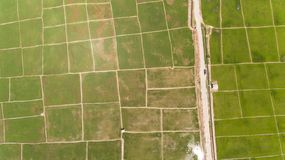 Рисовые поля Kota Belud стоковая фотография rf