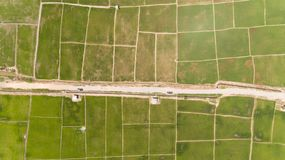 Рисовые поля Kota Belud стоковое фото