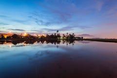 Рисовые поля в Bukit Mertajam Penang, Малайзии стоковая фотография