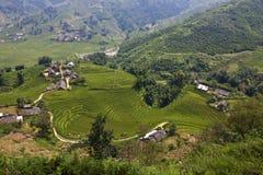 Рисовые поля и малые деревни стоковые фотографии rf