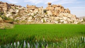 Рисуночный ландшафт природы. Hampi, Индия Стоковые Изображения