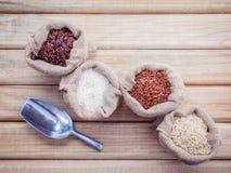 Рисы смешанных всех рисов зерна традиционных тайских самые лучшие для здоровой стоковое фото