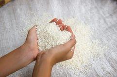 Рис в наличии Стоковое фото RF