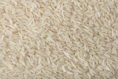 Рис жасмина заполняя рамку Стоковые Изображения RF