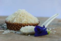 рис жасмина Стоковые Фотографии RF
